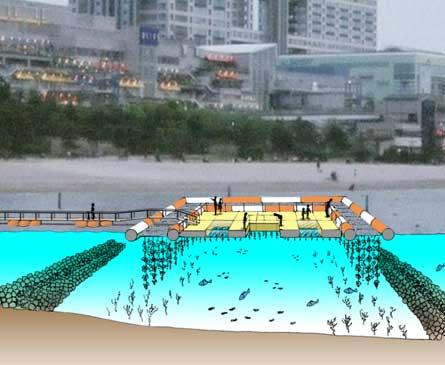 お台場海浜公園におけるカキの水質浄化実験