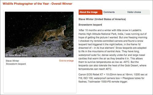 greenz/グリーンズ  Wildlife Photographer of the Year