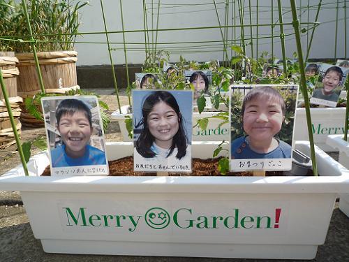 merry_planter011