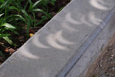 greenz/グリーンズ 日食木漏れ日