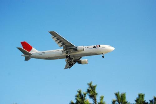 上空を飛行機が飛んでいきます。飛行機マニアにはたまらないスポットでした。