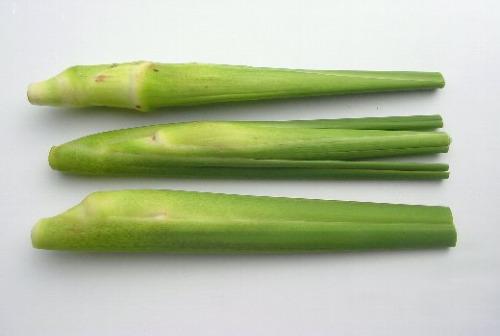 """田んぼの再生を願って作ったかわいらしい秋野菜「マコモタケ」。""""マコモタケのきんぴら""""など「とくたろうさんブログ」に載っているレシピを参考に、料理してみるのも楽しそう!"""