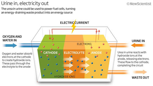 The Carbamide Power System scheme. (c) New Scientist