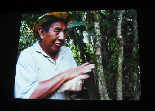 アマゾンのヤナワナ族の方に聞く植物の話
