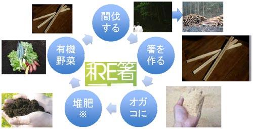 greenz/グリーンズ 和Re箸サイクル