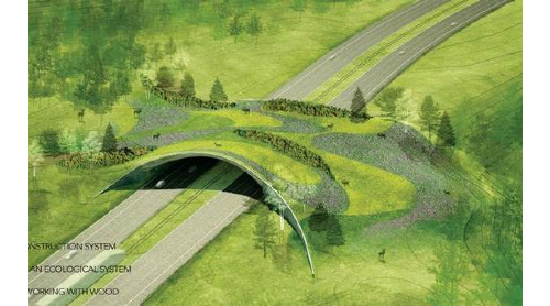 Overpass for Wildlife