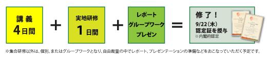 5_Curriculum