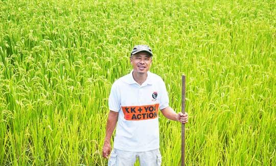 黒潮町で無農薬のお米をつくっている千葉さん。田んぼにいるメダカをみていたら農薬を撒く気になれなかったそうです。
