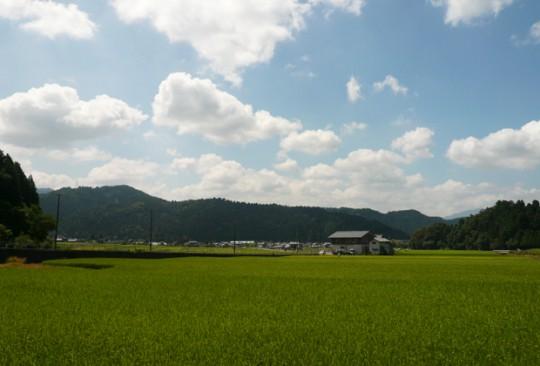 kawada-img6